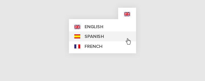 PHP MULTI LANGUAGE